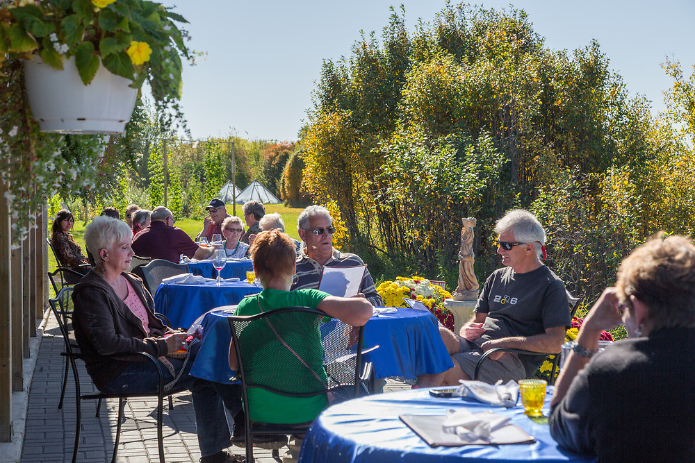 Snacks and wine on the bistro patio at Riverlot Orchards Winery, St. Louis, SK (Darrell Noakes)
